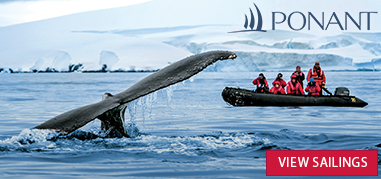 PONANT Antarctica May21-Jun3 Brand