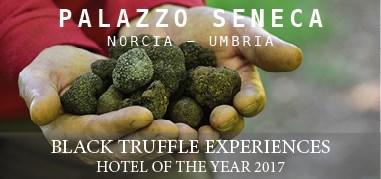 PalazzoSeneca Italy Feb12-Feb25 Brand