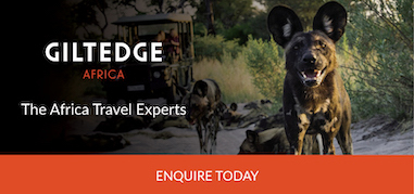 Giltedge Africa Apr6-Apr19 Product